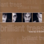 Brilliant Trees wake-up-and-dream-300